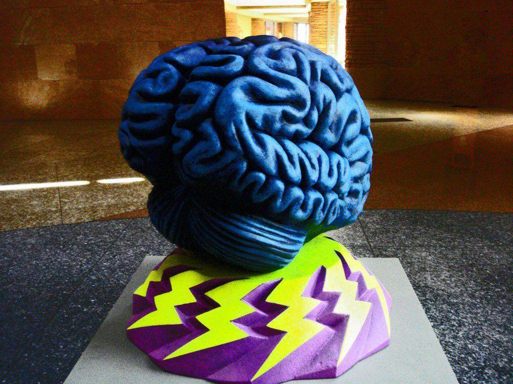 neurotransmitter level in the brain
