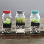 terrarium making singapore